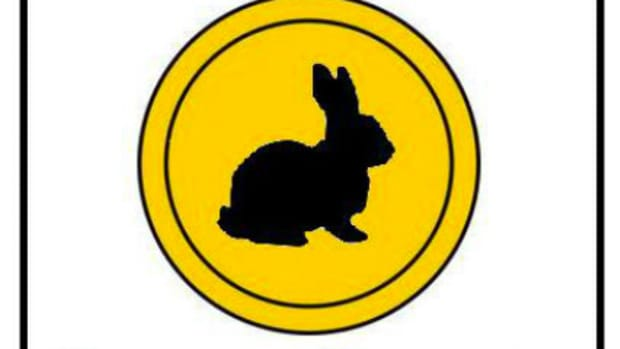 black rabbit coins logo