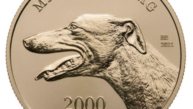 Hungarian_Greyhound