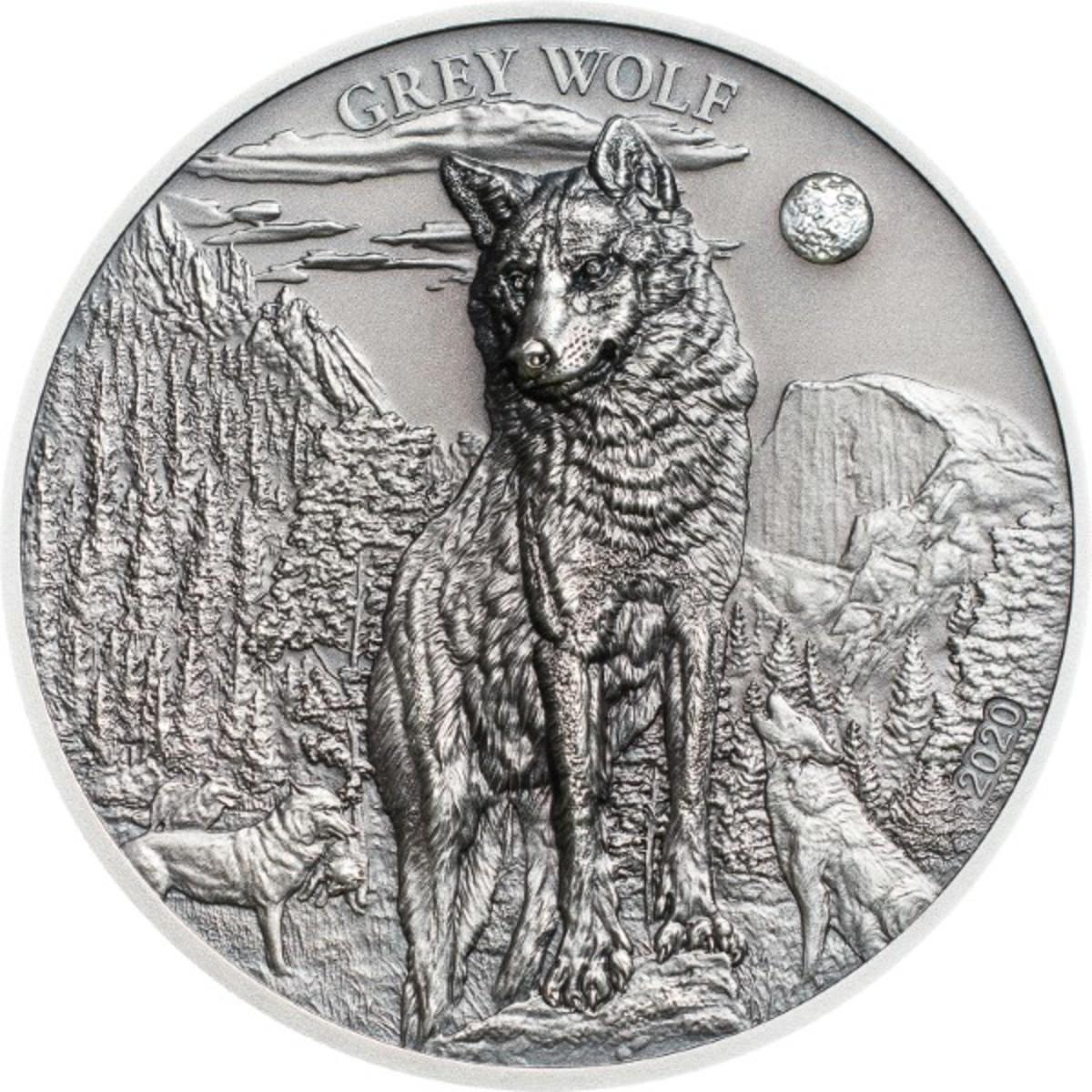 PW2001_Grey Wolf_r