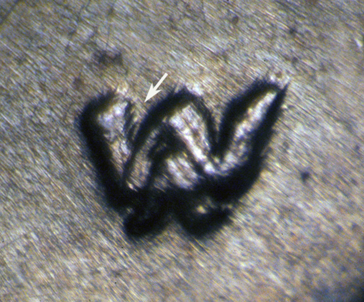 Shot at a special angle, as much as at least tripling can be seen on the upper left serif of the W.