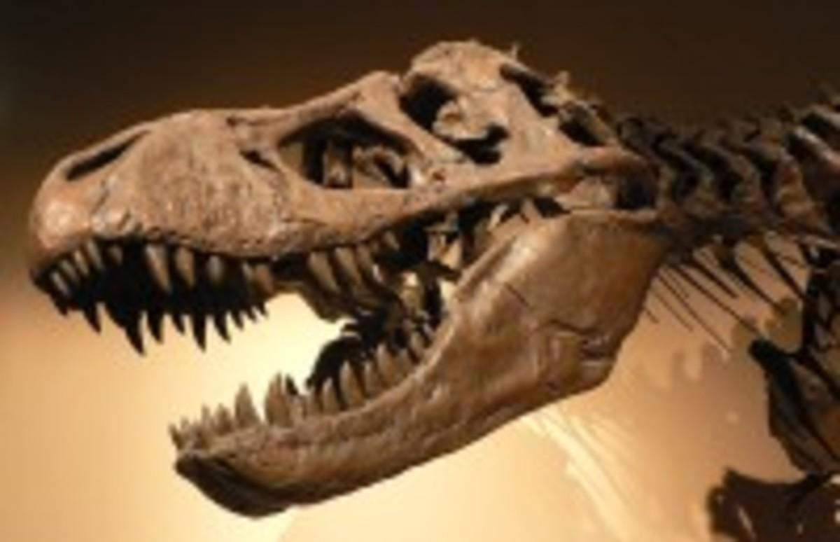 dinosaur200.jpg