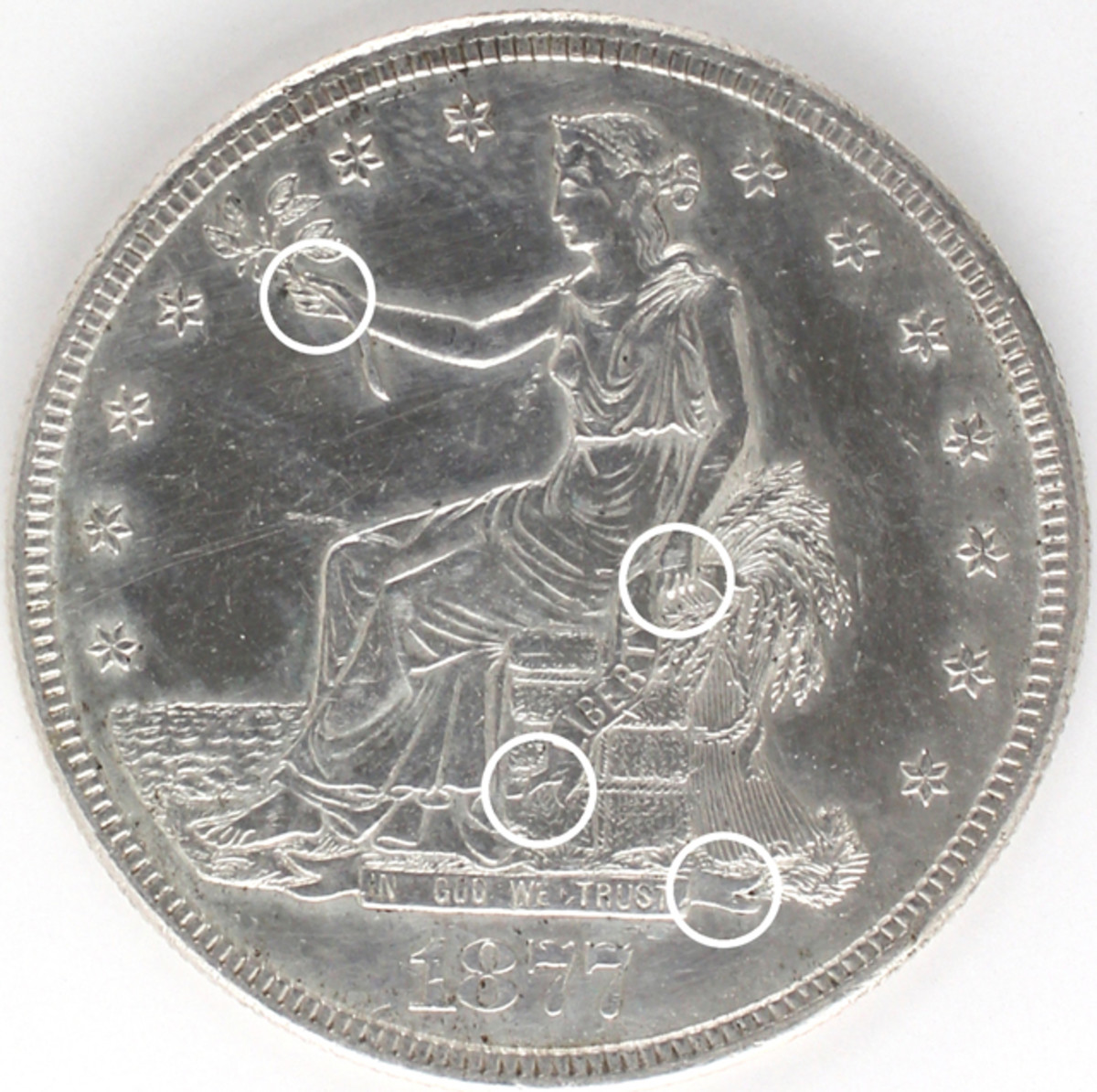 """Enlargements below are of the new unlisted hub type reverse for the Trade dollar. It has obverse 2M and Reverse 2M """"split-tail."""" The circled obverse areas are greatly enlarged and sometimes rotated to better see the design elements discussed."""