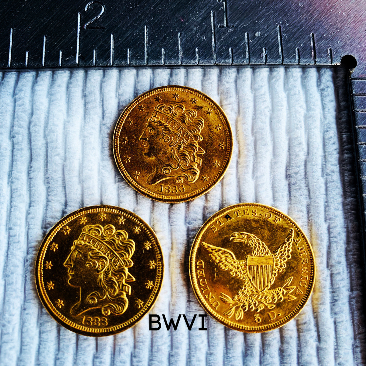 Coins recovered from the SS North Carolina Sept. 28, 2019.