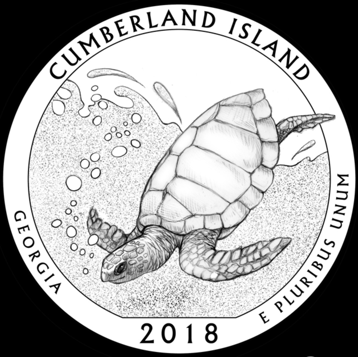A turtle is the central feature of GA-03, the CCAC approved Cumberland Island quarter.