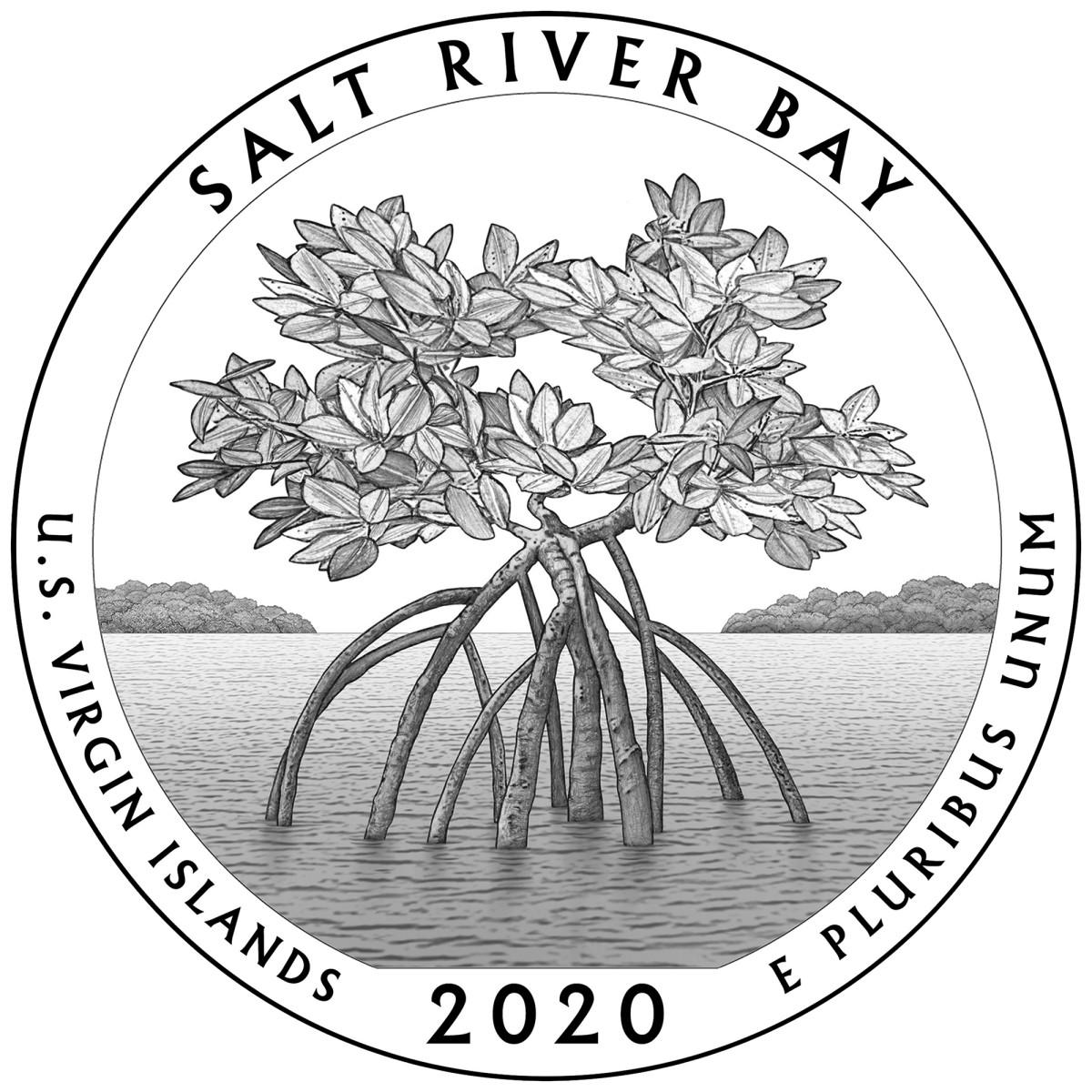 salt river bay 2020