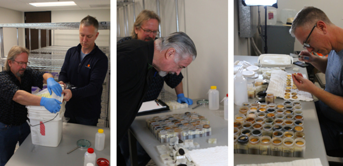 At left, Bob Evans and Dwight Manley carefully open the first of 38 sealed containers of treasure (which were in secure storage in Florida since June 2014) on Jan. 10 at PCGS headquarters in California. At center, PCGS Co-Founder David Hall examines some of the gold coins. At right, Dwight Manley looks closely. (Christina Good/Professional Coin Grading Service photos)