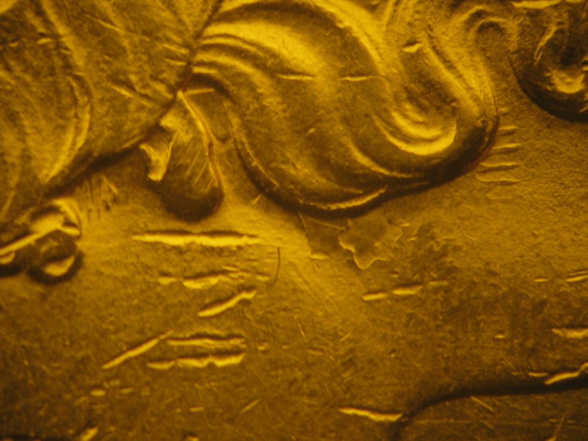 Figure 1. Can you see the star under the hair of Liberty on this gold $20? This is a clash mark. The star and rays originated on a reverse die. They were impressed on an obverse die when the two came together without a planchet between. The damaged obverse die then transferred the star design to the next planchet it struck.