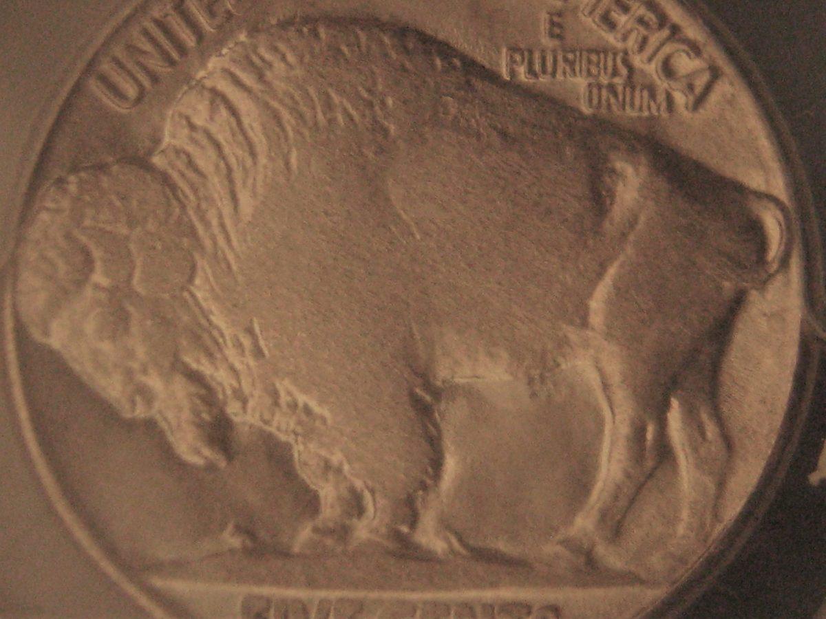 The reverse of a flatly struck Buffalo nickel.