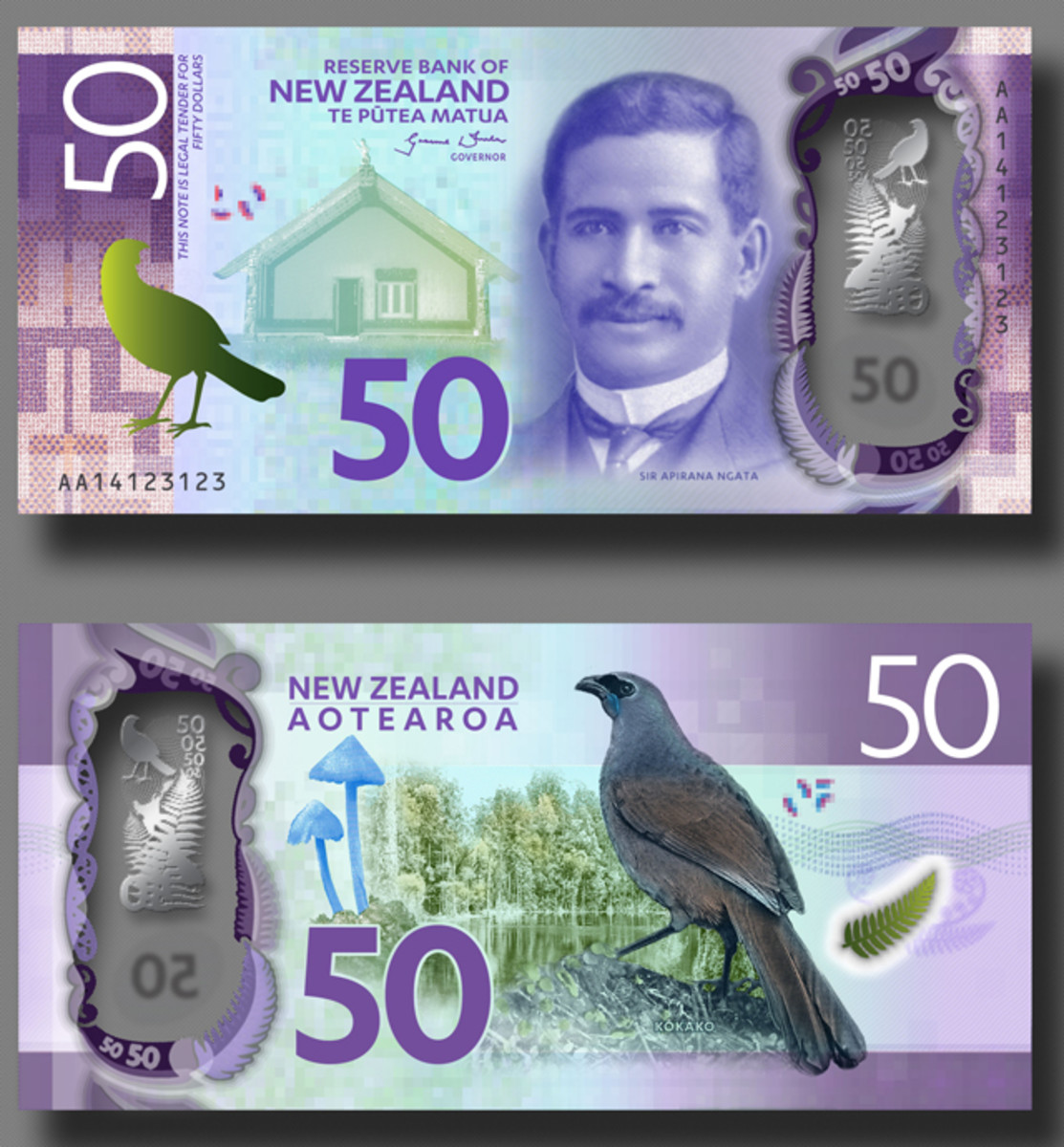 The New Zealand 50 dollar design (artist's depiction).