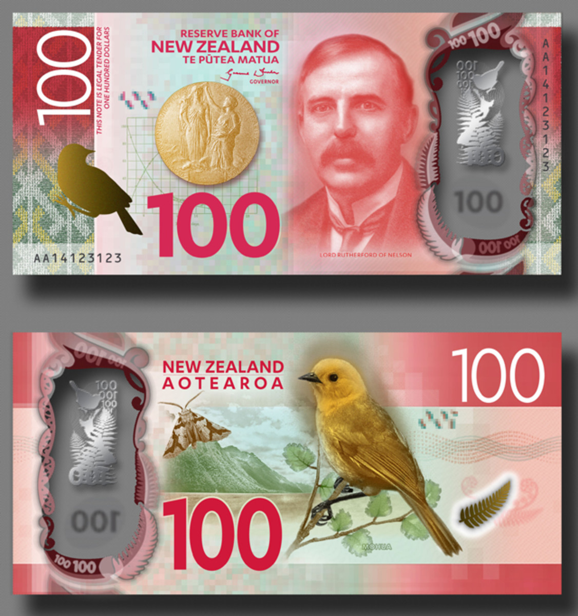 The New Zealand 100 dollar design (artist's depiction).