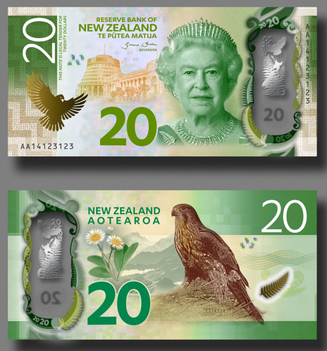 The New Zealand 20 dollar design (artist's depiction).