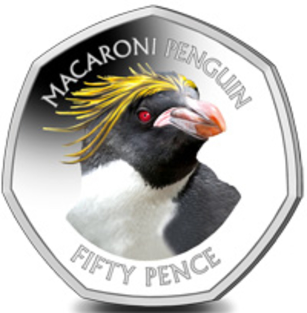 Reverse of the first coin in a second Falkland Islands' 50p Penguin Series showing the head of a Macaroni Penguin. (Image courtesy Pobjoy Mint)