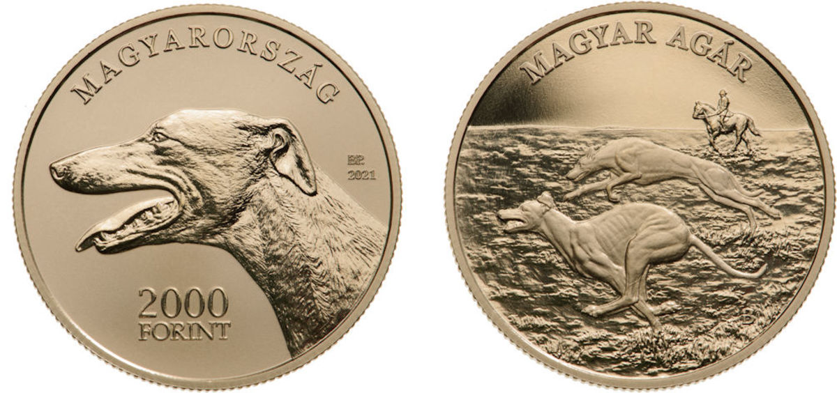 Third in the tremendously popular Hungarian Sheep and Hunting Dog Breed 2,000 Forint commemorative coin series is the Magyar Agar or Hungarian Greyhound. Designed by Boglárka IMREI at the Budapest Mint, it follows the series pattern of showing the breed at work on the coins reverse.