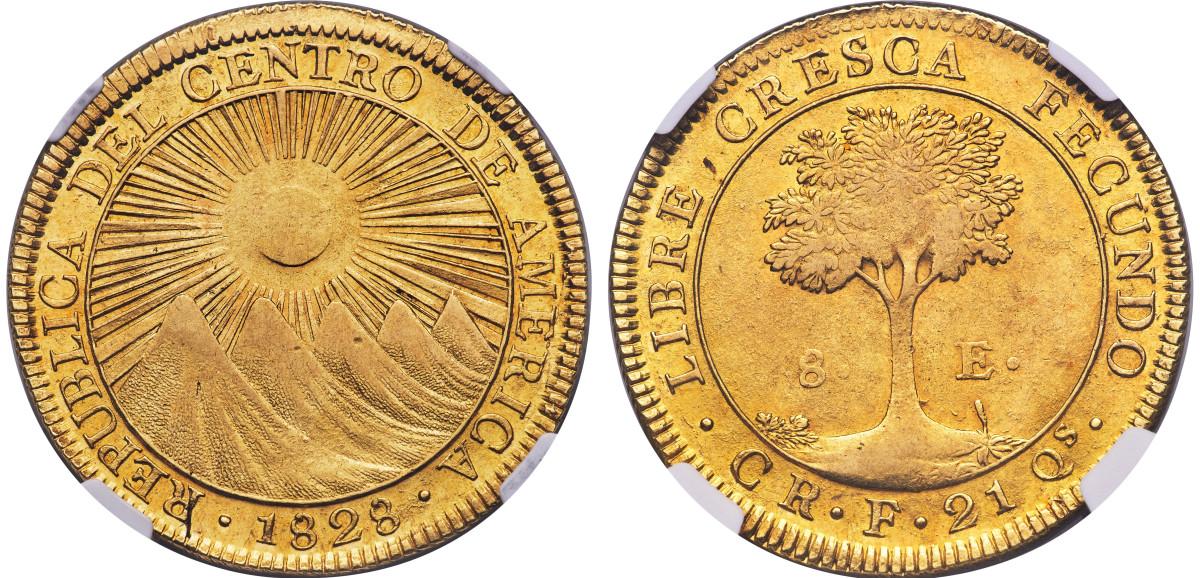 CAR gold 8 Escudos 1828